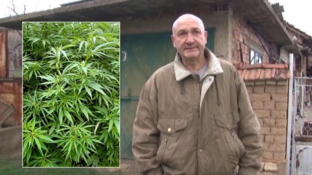 Разследван за дрога е кмет в Добруша