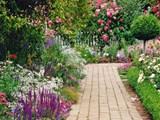 Актуални задачи през юли за цветната градина