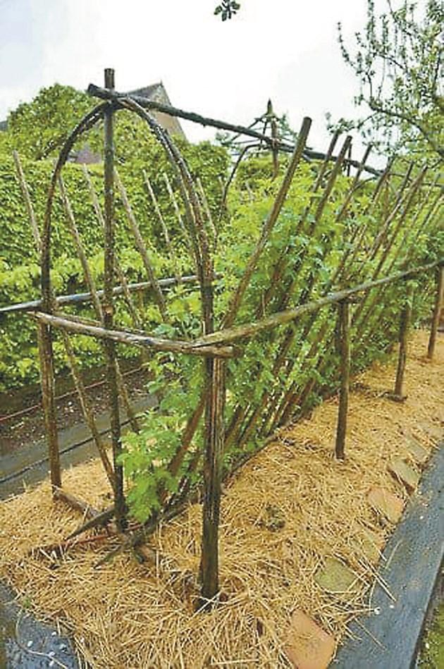Креативна дървена платформа за отглеждане на малини