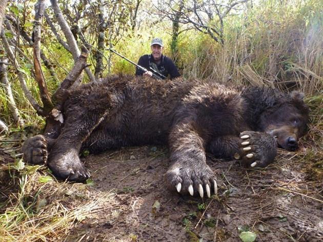 Ето я най-голямата мечка в света
