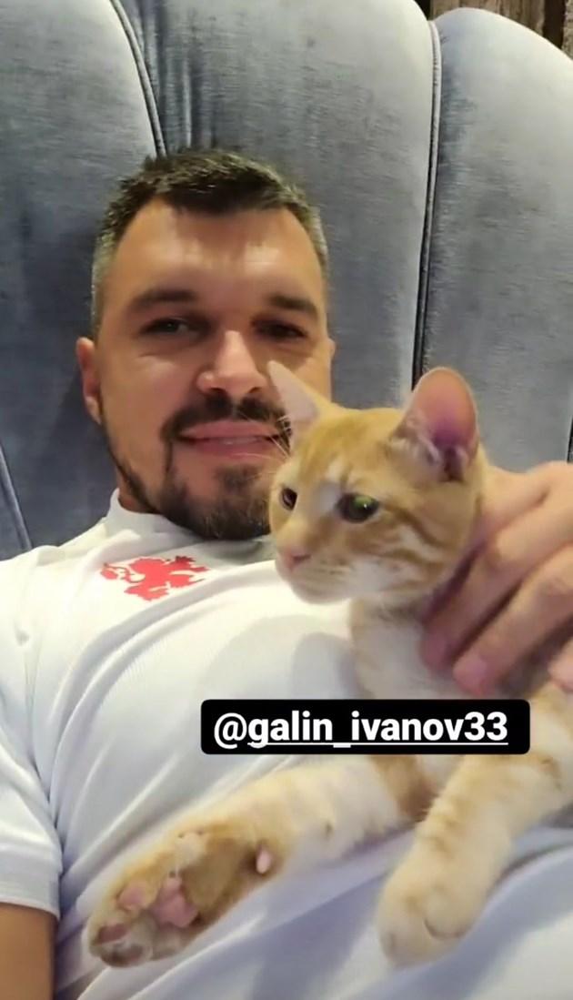 Божинов гледа мача в компанията на котката и на Галин Иванов