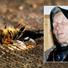 Ванга предрича смъртта на пчелите