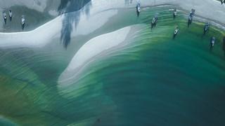 Новолуние в Рак - зелената вълна ще ни отведе там, където имаме нужда