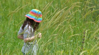 Каляването на децата започва през лятото