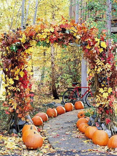 Важно за градината през октомври