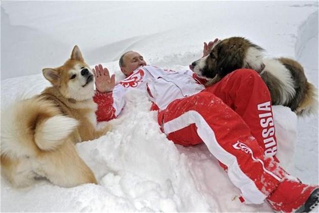 Кучето на Бойко пребори Путин