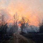 """Четвърти ден продължава горски пожар в района на АЕЦ """"Чернобил"""""""