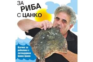 """Сомове по 10 кг се хващат в язовир """"Цонево"""""""