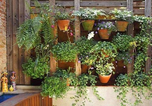 Вертикални градини красят и пестят място