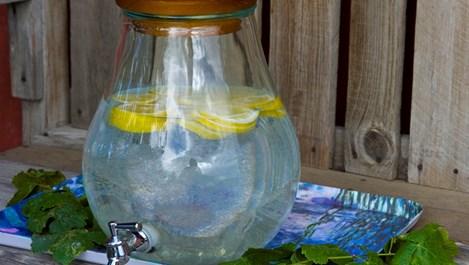 Панацеята лимонова вода