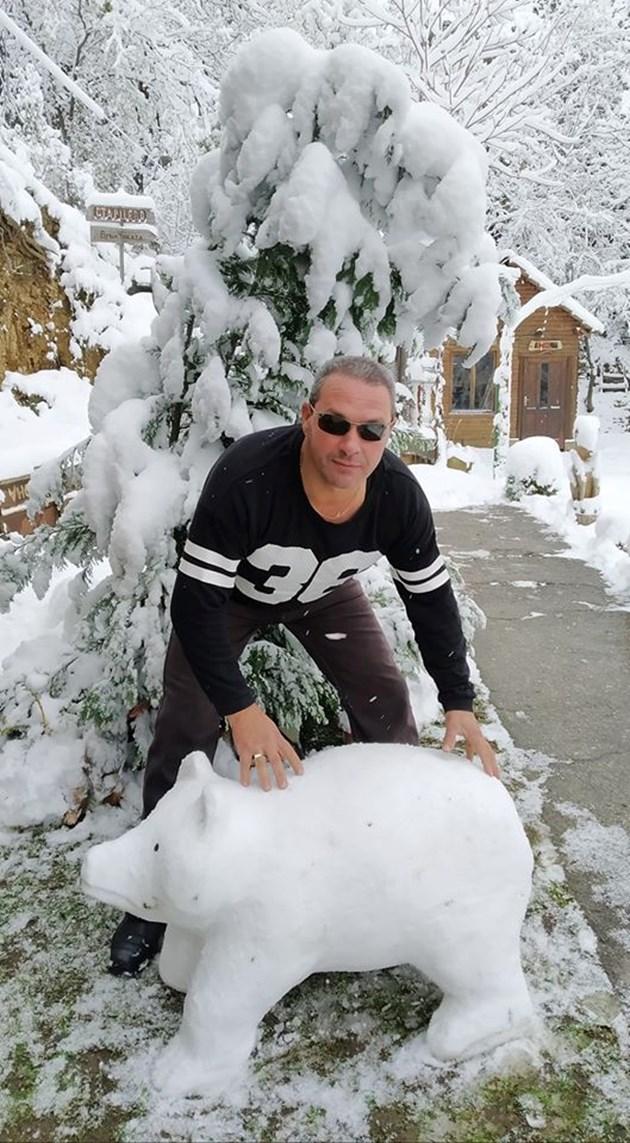 Мечки от сняг вае родопчанин