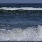 Над 1 т кокаин изплува от атлантическото крайбрежие на Франция