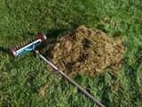 Аератор за трева ще реши ли проблема с мъха?