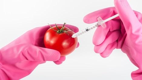 Как да разпознаем ГМО храните