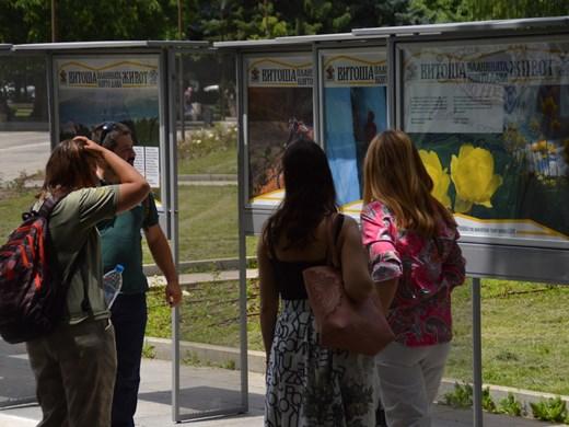 Уникални фотоси от Витоша представя от днес изложба пред НДК