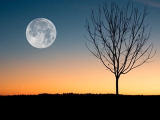 Пълнолуние в Стрелец и лунно затъмнение – маските падат