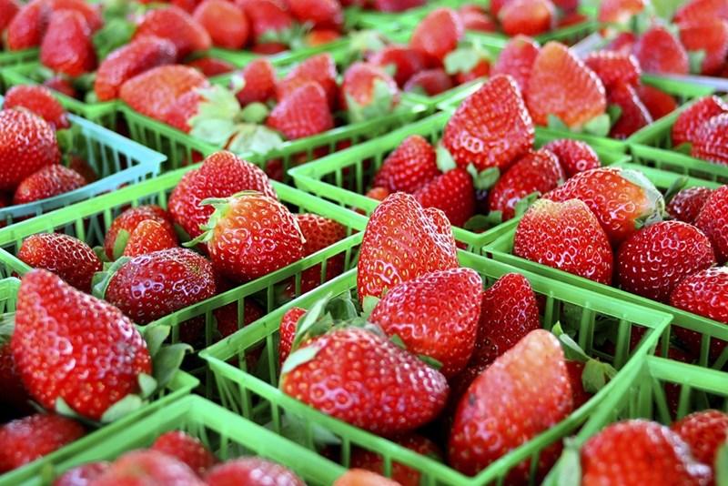 Ягодите изкушават, но могат да предизвикат алергия.