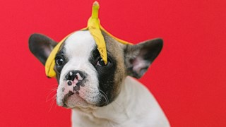 Удивителни ползи за красотата от банановата кора