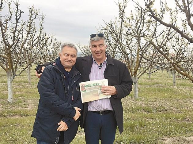 Всяка събота и неделя Янко Георгиев (вдясно) и Ростислав Димитров са в градините, лятната им отпуска минава в беритба на сливи