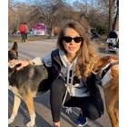 Никол предизвиква за селфи с улично куче