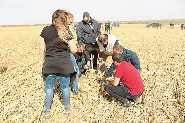 Производителите проверяват състоянието на почвата Снимки: Ваня Велинска