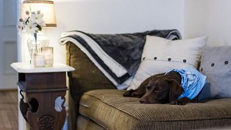 5 неща, които удължават почивката