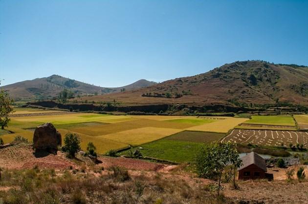 Изгодно: Продажбата на земя през януари гарантира добра сделка