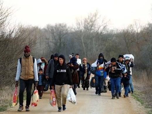"""Изслушван шефа на """"Фронтекс"""" изтласкванили са мигранти на граница с Турция"""