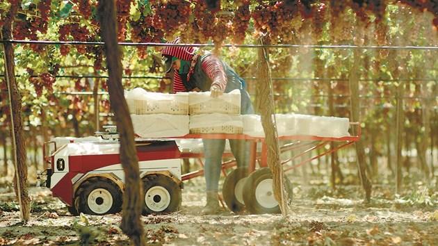 Използвайки автономност, задвижвана от компютърно зрение, или чрез операция от дистанционно управление, Carry автономно и безопасно следва фермери