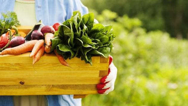 5 причини защо да ядете био храни