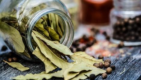 7 неща, които се случват, ако запалим дафинов лист