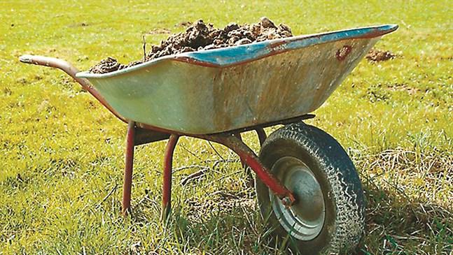 Време е да се даде основната храна в зеленчуковата градина