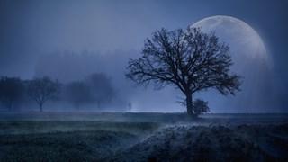 Луна във Водолей – време за вяра, но внимавайте с прибързаните действия