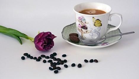 За какво служи утайката от кафе в домакинството
