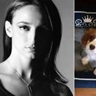 Деси Тенекеджиева спаси бебе куче