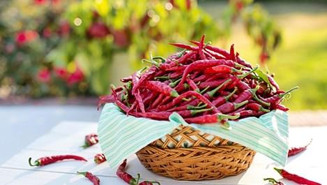 7 неща, които се случват с тялото, когато ядем пикантни храни