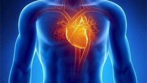 3D принтери ще произвеждат сърца и артерии