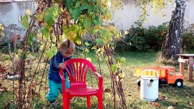Приказни детски палатки от...листа