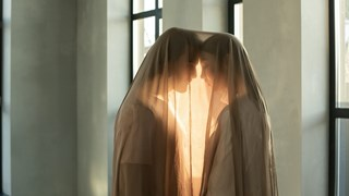 Защо жените искат непознати любовници