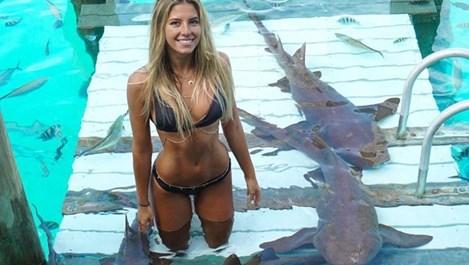 Австралийка по бикинидразни акули