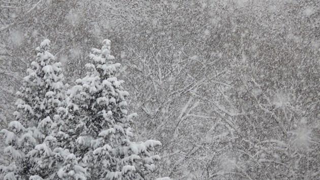 Дъждът преминава в сняг утре сутрин в Североизточна България