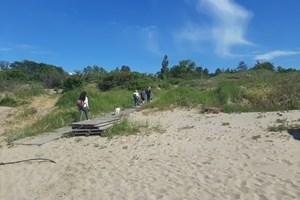 Няколко са дървените скари, които отвеждат към плажа в Ахтопол.