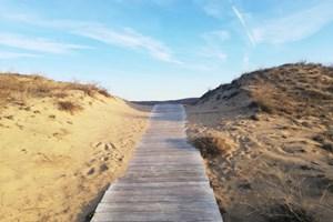Дървените скари към красивия плаж на Аркутино са там от години. Снимка:Тони Щилиянова