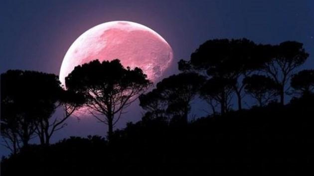 Розова супер Луна наблюдаваме тази нощ (Галерия)