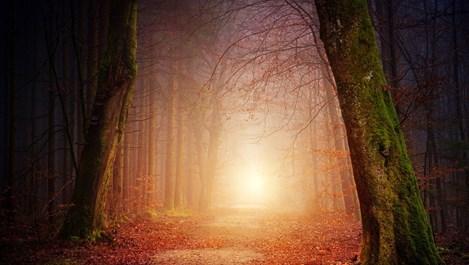Слънце в Близнаци – светлина в тунела