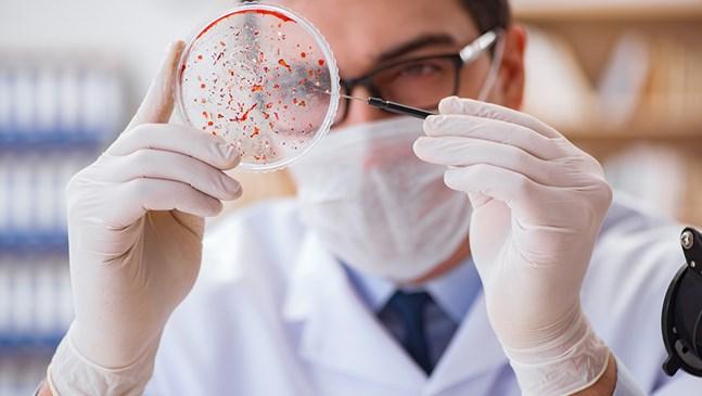 Как да се пречистим от паразити без лекарства