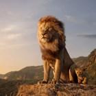 """Най-гледаният филм в България за 2019 година е """"Цар Лъв"""""""