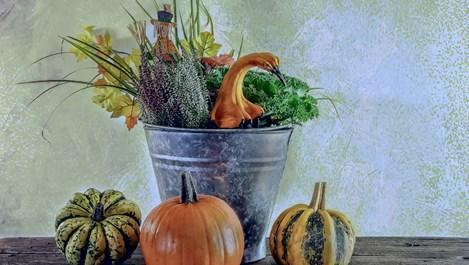 """Ноември е """"кратун месец"""" в народния календар"""