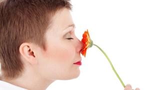 Първа помощ при кръвоизлив от носа