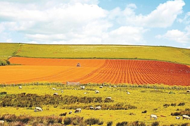 Повишаването на киселинността на почвата е основно следствие от човешката дейност